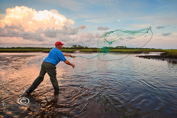 Perfect Cast Net Throw - Mike Davis of Cedar Key Seafarms - Photo by Pat Bonish